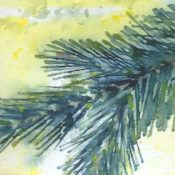 Spruce Study, detail Watercolor on sketchbook paper